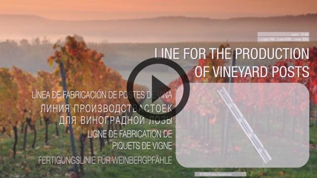 vineyard-vid